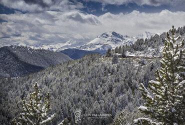 Montent de Pallars Coll de So